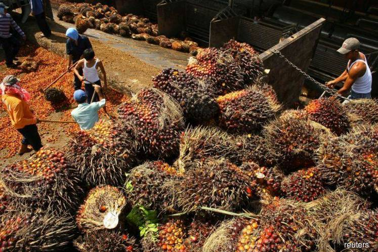 Asian palm oil producers label new EU safety limits as 'trade barrier'