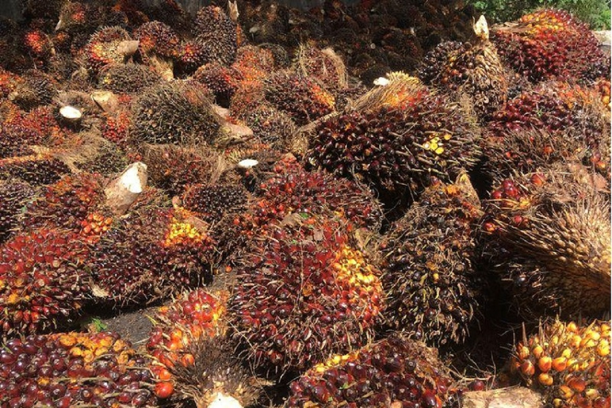 Malaysia's April palm oil stocks seen lower as exports jump