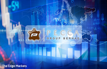 Stock With Momentum: Pecca Group