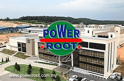 Power Root resilient to domestic market headwinds