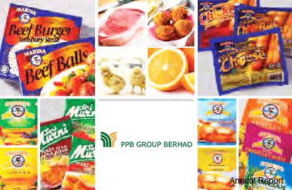 PPB集团:原产品价格走低 抵消令吉走贬冲击