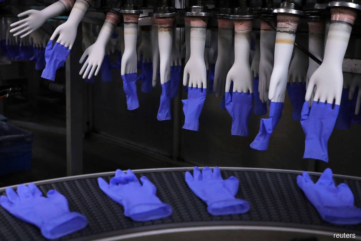 Glove stocks close higher, but no short squeezing as buying loses steam