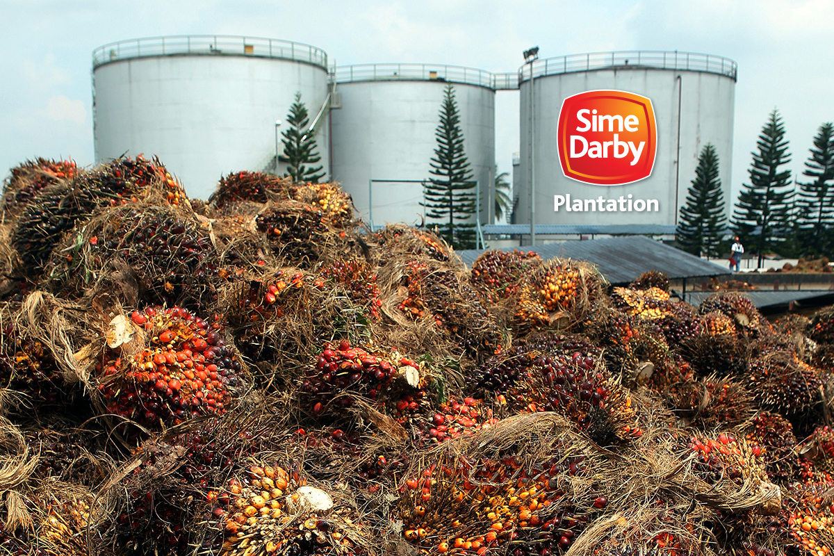 Sime Darby Plantation says foreign shareholding rose for two consecutive months
