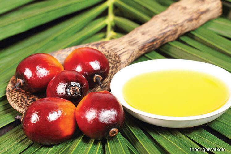RHB raises 2018 average price forecast for palm oil to 2,550 rgt/ton