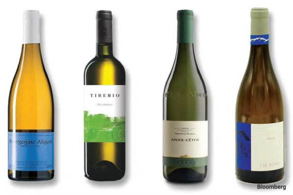 Wines: Six most delicious wines you have probably never heard of