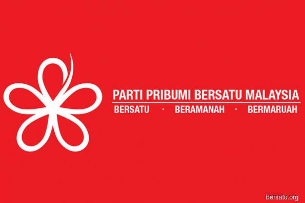 Politics and Policy: Bersatu's bumiputera agenda