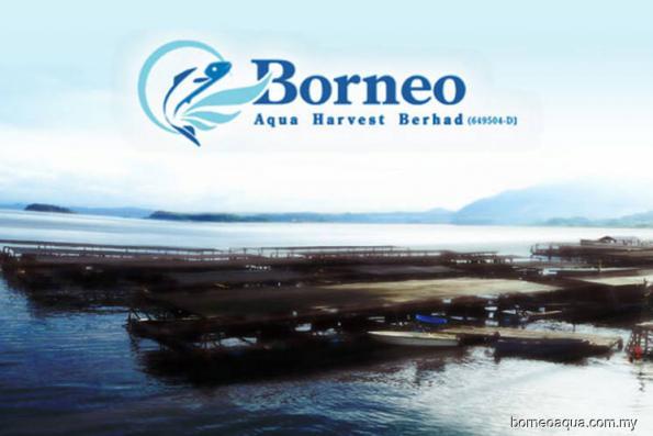 Borneo Aqua slapped with UMA query