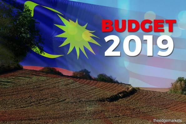 Budget: Govt will sell lands on scheduled and staggered basis to the highest bidder to maximise govt revenue