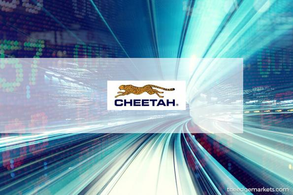 Stock With Momentum: Cheetah Holdings