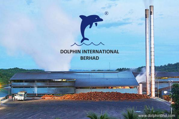 Dolphin jumps 11.11% on plans to diversify into construction and property