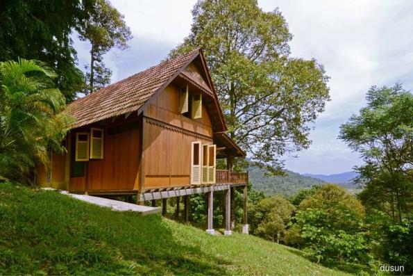Growing the Dusun
