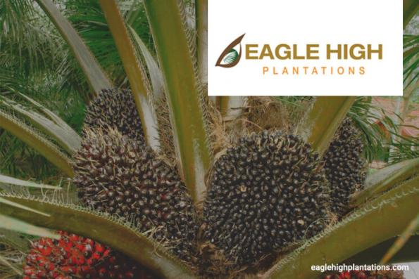 Eagle High rubbishes claims its European business at risk