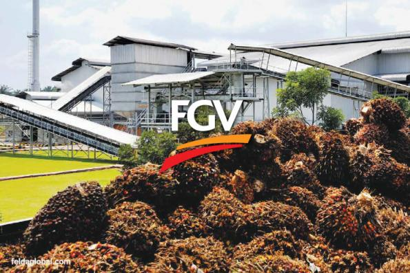 FGV aborts proposed tie-up with MARA to explore logistics business