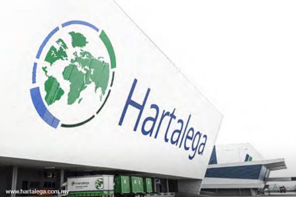 Hartalega falls for 6th day; average historical rebound 3.3%