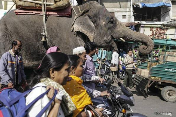 India's economy is elephant that's starting to run, IMF says