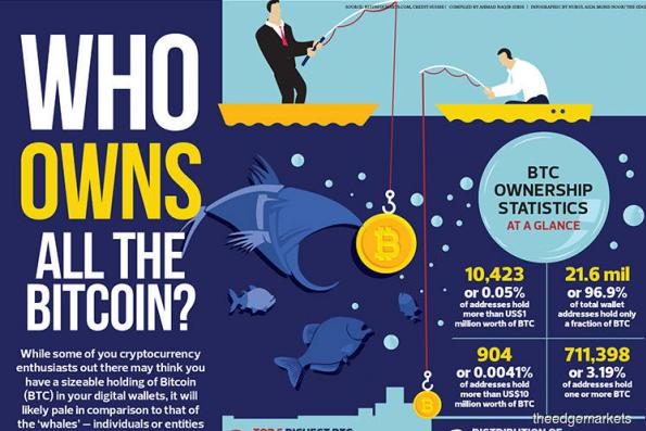 Who owns all the bitcoin?