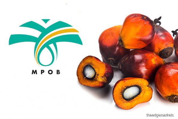 M'sia Dec palm oil stocks hit record high of 3.22 mil tonnes