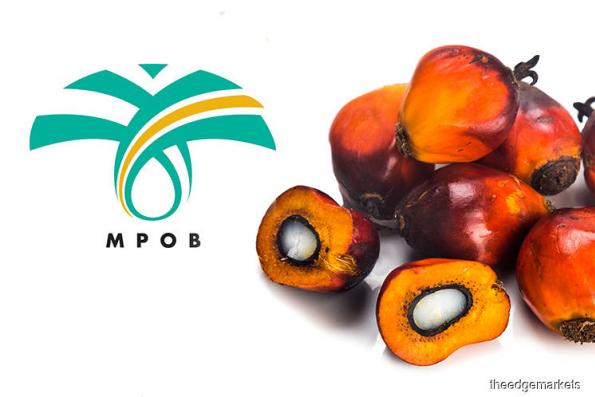 Malaysia's palm oil exports forecast to rise 4.3% in 2019 — MPOB