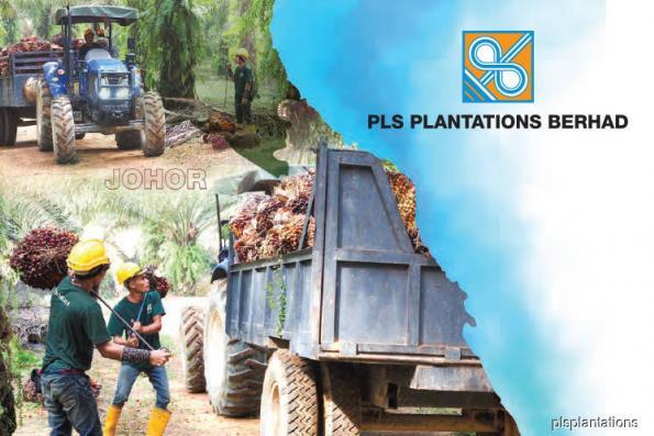 Kang Hoo now executive chairman of PLS Plantations