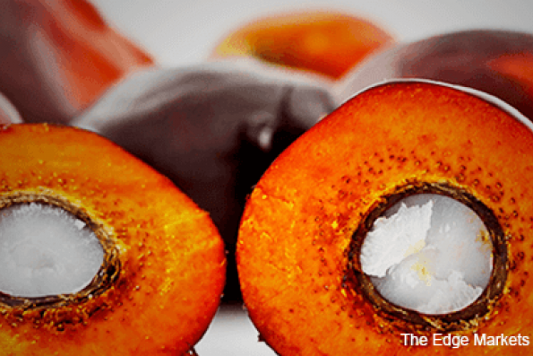 Palm oil may test support at RM3,089
