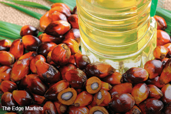 Malaysia end-Jan palm oil stocks seen falling to 5-month low — survey