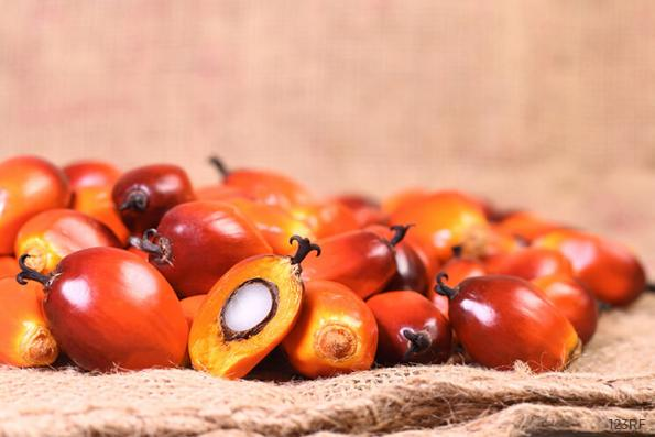 Palm oil falls on weaker export data; output seen to improve