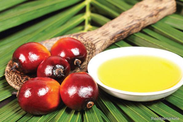 RHB raises 2018 average price forecast for palm oil to 2,550 rgt/ton