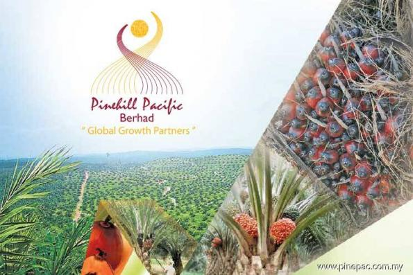 Pinehil Pacific active, jumps 40.91% on disposal of land to United Plantations