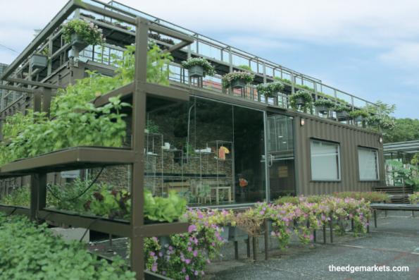 Cover Story: Urban farming made easy