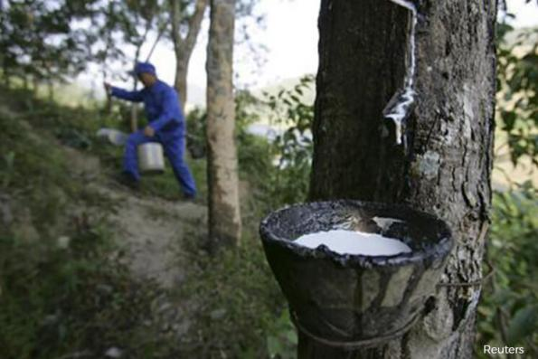 Malaysia's April rubber production up 17.1% on year
