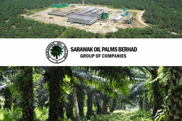 Sarawak Oil Palms 1Q net profit down 61% on lower output