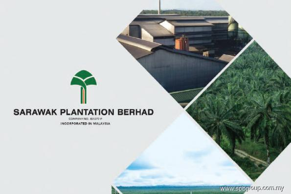 Sarawak Plantation falls into the red in 4Q, reports first annual loss