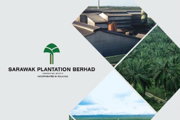 Sarawak Plantation 2Q net profit nearly halved on lower ASP, sales