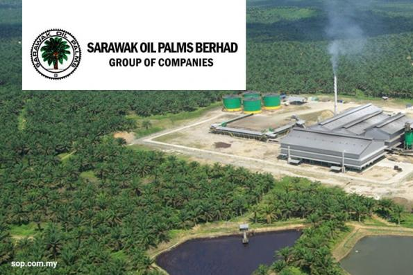 Sarawak Oil Palms 2Q net profit almost doubles on improved FFB production