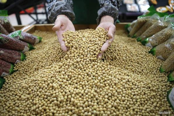 Soybeans hit 2-1/2-month high after USDA cuts yield estimate