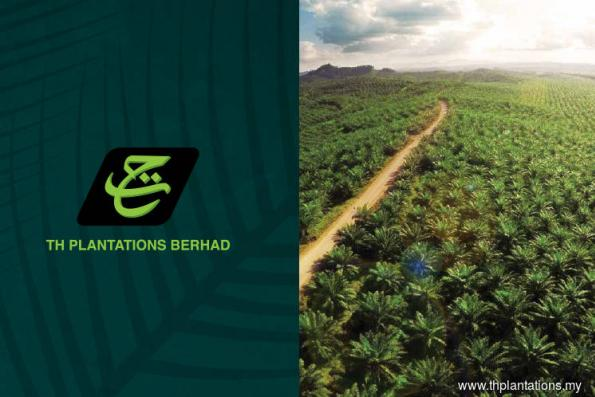 High cost structure seen hurting TH Plantations
