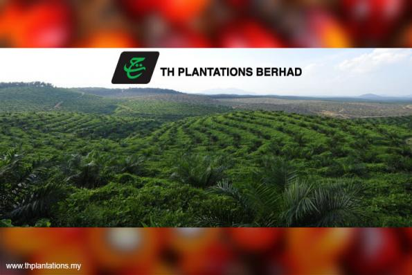 TH Plantations 3Q profit down 40% on higher finance cost