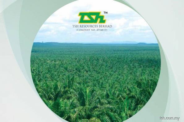 TSH Resources 1Q net profit down 40% on lower CPO, PK prices
