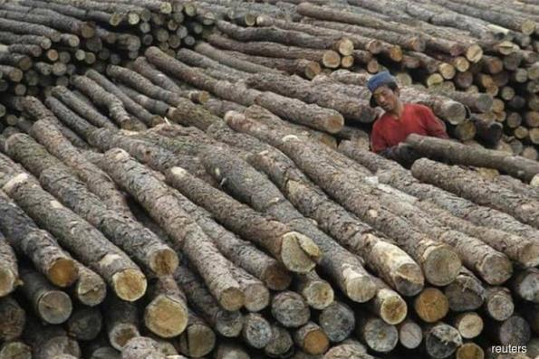 Timber-based manufacturers can expect higher returns this year, says Mah