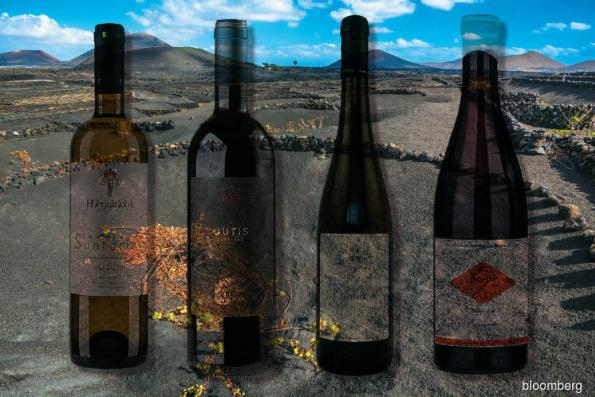 Volcanic wines heating up globally