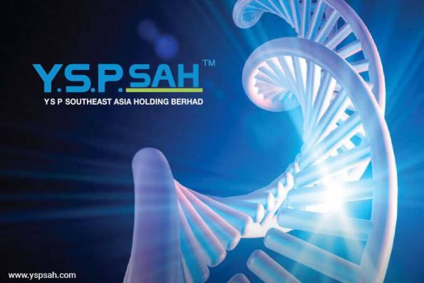 YSP SAH sees export market as key earnings driver