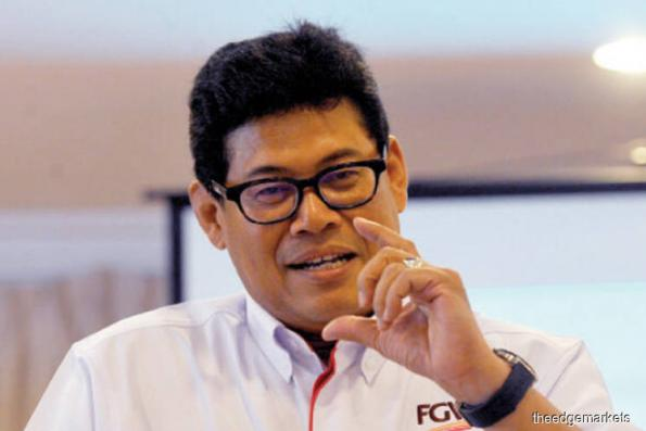 FGV aims to increase land bank this year — CEO