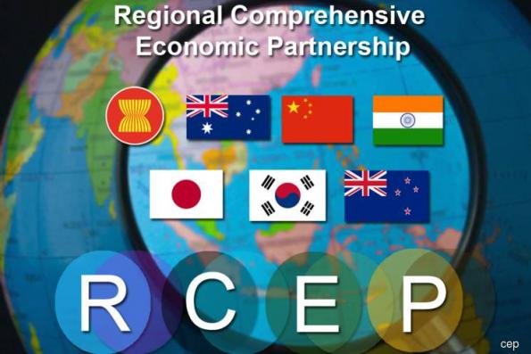 RCEP talks may be delayed due to elections in several countries