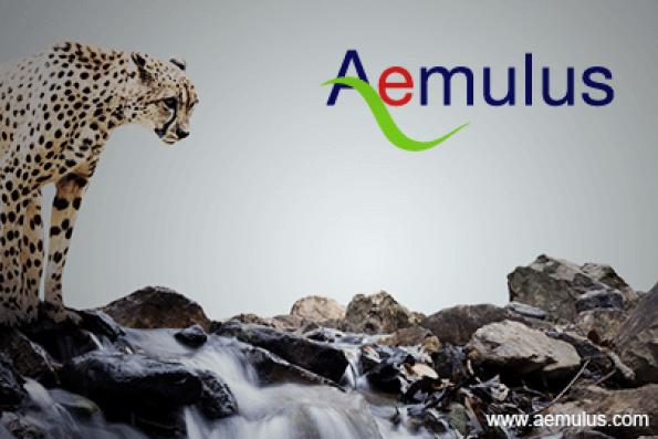 TA Securities lead underwriter for Aemulus