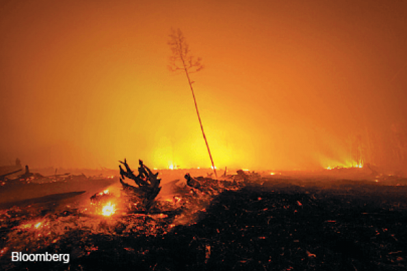 Indonesia's fires are our problem