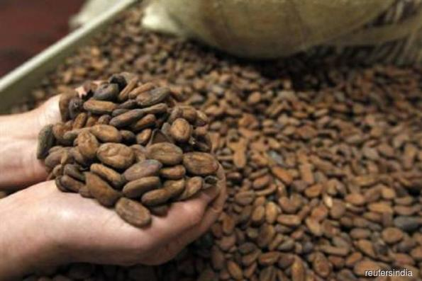 Asia third-quarter cocoa grind up 3.7% yr/yr to 196,418 tonnes