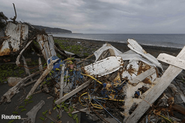 debris_of_plane_inside_tree_branches_reunion_island_mh370_reuters