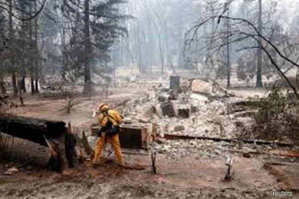 France sets out plans to tackle deforestation