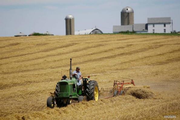 Trump's tariffs could cripple American farmers