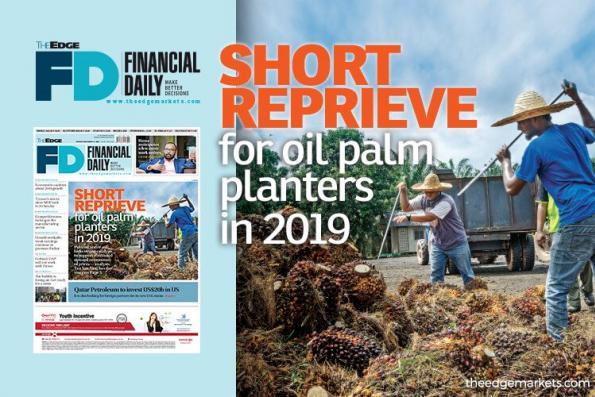 2019年油棕园主的短暂缓解